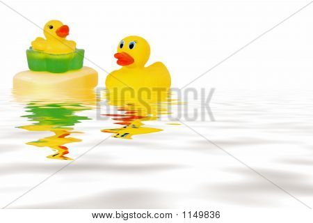 Rubber Ducks  In Water
