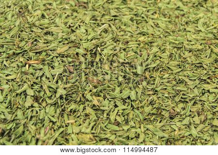 dried tarragon stalks on a white background