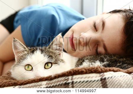 Boy Sleep Beside Pet Siberian Male Cat