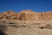 stock photo of skarabaeus  - ancient temple of hatschepsut at theben west - JPG