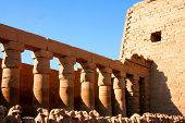 pic of skarabaeus  - ancient karnak temple in luxor in egypt  - JPG