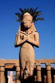 pic of skarabaeus  - ancient karnak temple in luxor in egypt - JPG