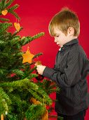 Boy Hanging Christmas Tree Decorations