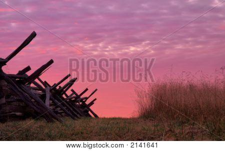 Pink Trails