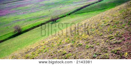 Landscape With Spring Diagonals