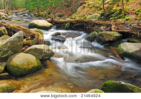 Mountain Stream In The Spring