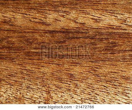 Texture of natural wood grain. Coconut palm origin.