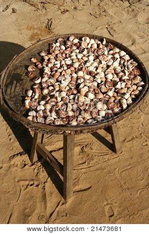 Betel nut (Myanmar)