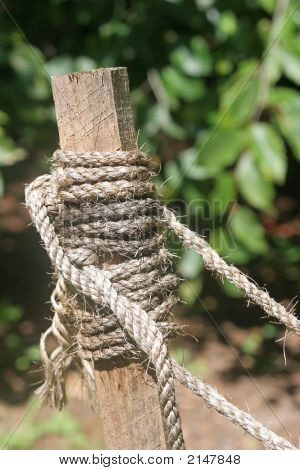 Staked Rope