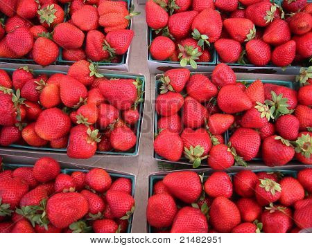 Lots of fresh strawberries