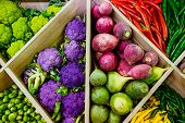 Top View Assortment Of Fresh Vegetables At Market Counter, Vegetable Shop, Farmer Marketplace. Organ poster