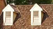 image of gabled dormer window  - Two windows in dormers on a wood shingle roof - JPG