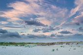 Empty Sea Coast Beach View With Sunset Cloudy Sky poster
