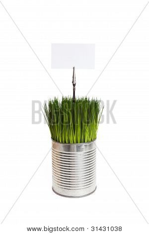Green Grass And Metal Can