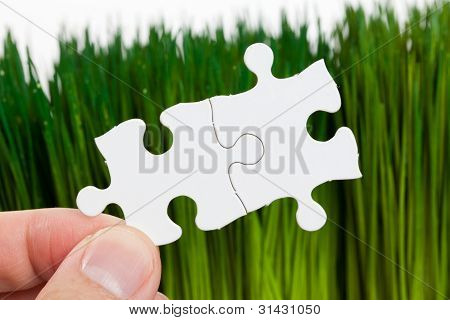 Green Grass And Puzzle