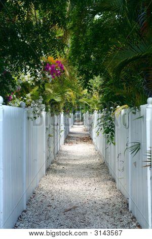 Pebble Walkway And White Fences.