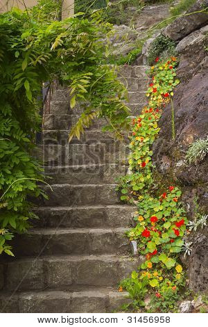 Old Stone Stairs In The Garden