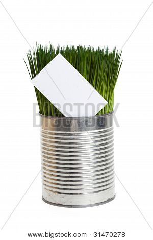Green Grass And Business Card