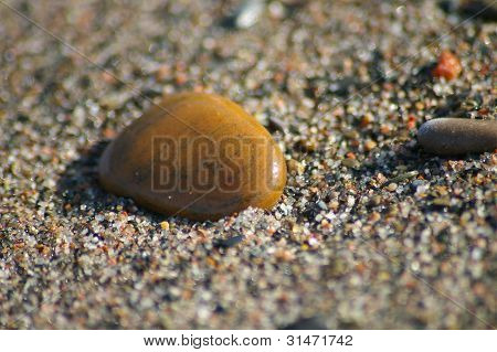 Smooth golden pebble on a colorful sandy beach