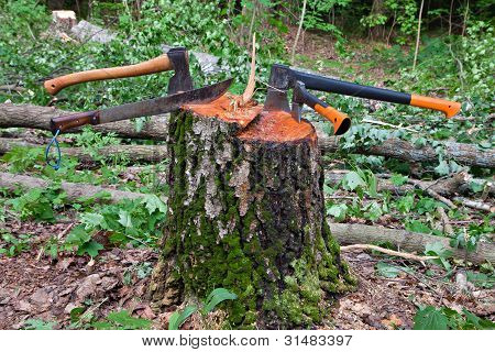 Several Hatchets Sticked In A Tree Stump