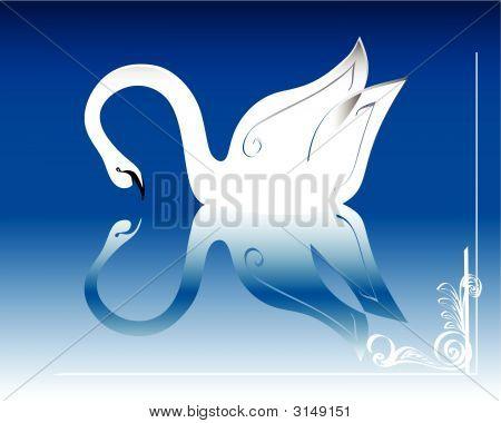 Swan 3.Eps