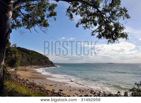 Noosa National Park Beach, Queensland Australia.