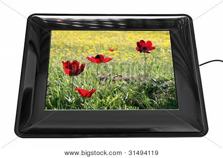 Ddigital Photo Frame