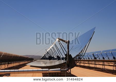 Solar Energy Desert Plant