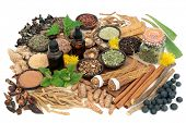 Adaptogen food collection with herbs, spices, essential oil &supplement powders. Used in herbal medi poster