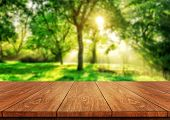 Brown Wood Table In Green Blur Nature Background. poster