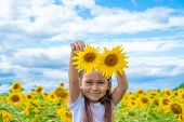 Adorable Little Girl Holding Sunflowers In The Garden. Closeup Kid Portrait, Baby With Two Sunflower poster