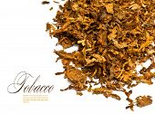 pic of tobacco leaf  - Cut and dried different sorts  - JPG