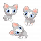 Kittens Kitten Cat Cats Gray Cartoon Isolated Illustration Vector poster