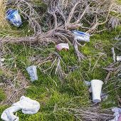 Square Frame Close Up Of Grassy Ground Littered With Discarded Plastics And Disposable Cups poster