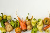 Ugly Vegetables: Potatoes, Carrots, Cucumber, Peppers And Tomatoes On White Background, Ugly Food Co poster