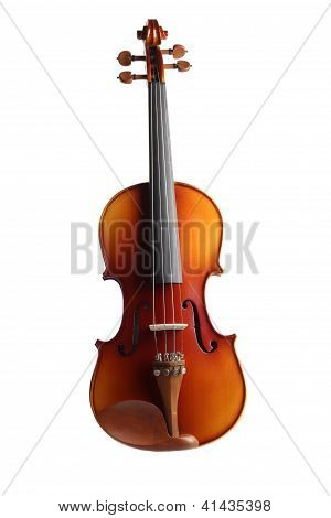 Violin (isolated)