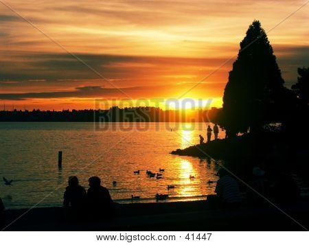 Marina Park At Sunset