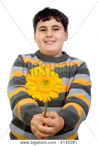 Boy Giving Flower