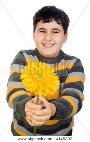 Niño feliz con Gerbera Margarita