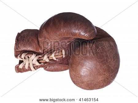 Brown Boxing Glove