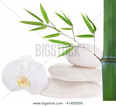 composition with stones, bamboo and orchid isolated on white background