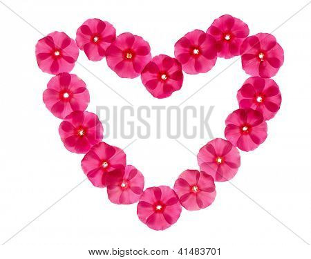 heartshaped pink floral frame isolated on white background