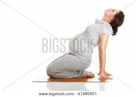 Pregnant Woman Practising Aerobics