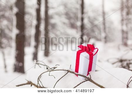 Present In Snow Decoration