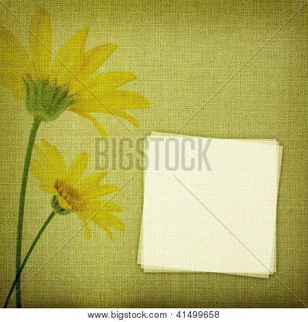 Margarida flores na textura de tecido com espaço de cópia