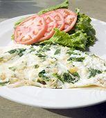 Florentine Spinach Egg White Omelet  Feta Cheese   Tomato Lettuce poster