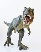 stock photo of dinosaur  - A Tyrannosaurus Rex Hunts Against a White Background - JPG