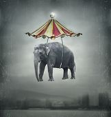 stock photo of tent  - Fantasy image that represent a flying elephant with circus tent in the sky and landscape on the background - JPG
