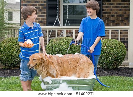 Boys Giving Dog a Bath