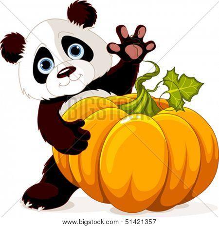 Cute little panda holding giant pumpkin